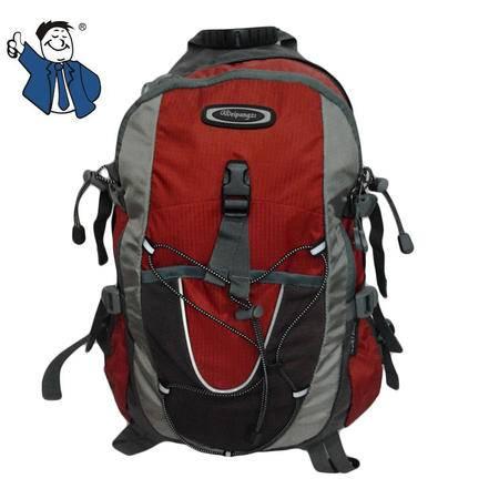 魏胖子 户外防雨双肩背包 糖果色电脑背包 旅行包 1109