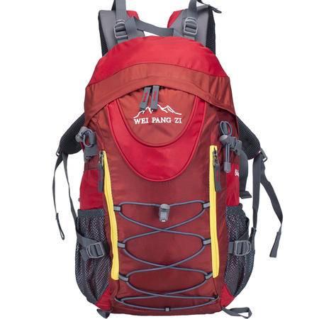 魏胖子正品专柜 新款户外双肩背包旅行运动背包 带防雨罩 3755