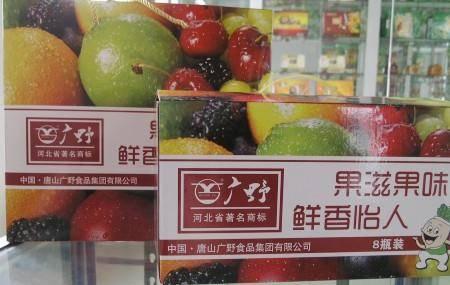 【河北特产】果滋果味加广野山楂礼品包590g