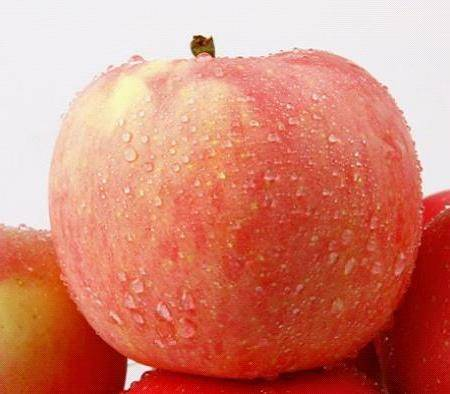【陕西特产】洛川精品红富士  礼盒装  380克*12个