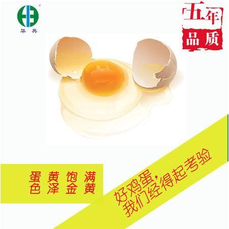 开县特产华兵桑叶蛋  放养土鸡蛋 纯天然放心鸡蛋新鲜直达包邮