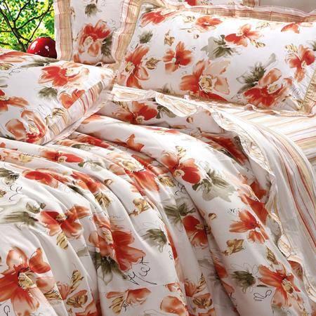 Lionsuz蓝丝 沁香园 时尚印花全棉床裙四件套