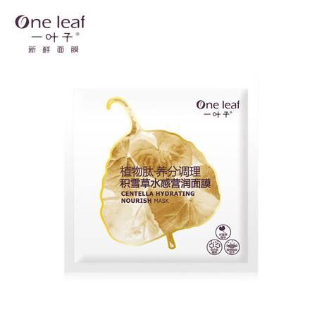 One leaf 一叶子植物肽·养分调理/积雪草水感营润面膜25ml/片   /