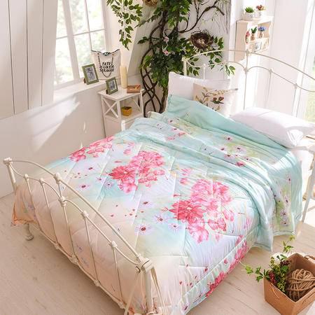 床上用品被枕套    新款天丝冰霸夏凉被丝滑透气防潮空调被下了被子