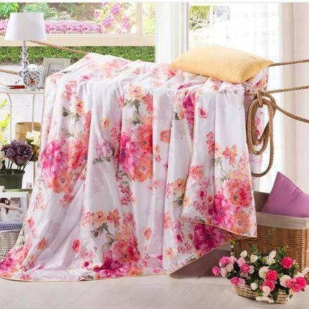 床上用品被枕套   臻品天丝夏被单人双人加大舒适透气空调被薄被子