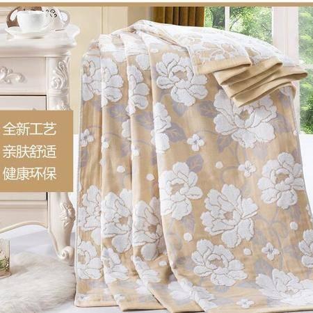 床上用品被枕套    夏季毛巾被纯棉夏凉被单人双人全棉毛巾毯空调被