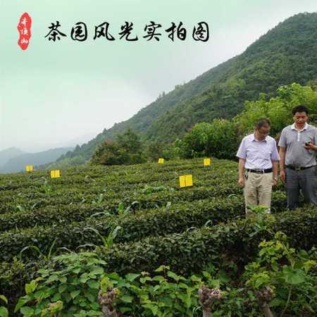 2016新茶一级散装黄山毛峰茶有机绿茶茶叶