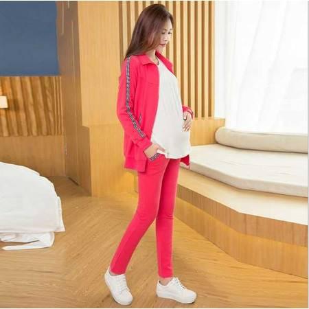 孕妇时尚休闲运动套装春秋长款纯棉可调节托腹裤立领开衫孕妇上衣