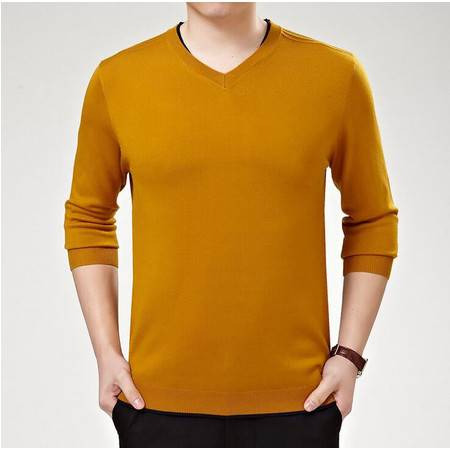 2016春装新品男士V领针织衫男式t恤男装长袖毛衣