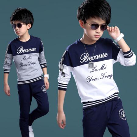 2016春款男童休闲纯棉套装 春秋季中大童运动服 男孩卫衣两件套