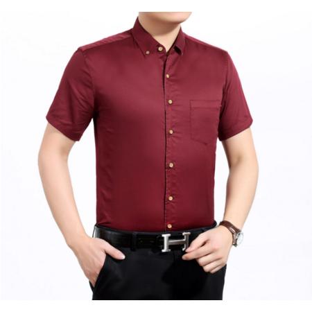 016夏季新款男式衬衫 休闲纯棉翻领衬衫男士 纯色短袖衬衫男装