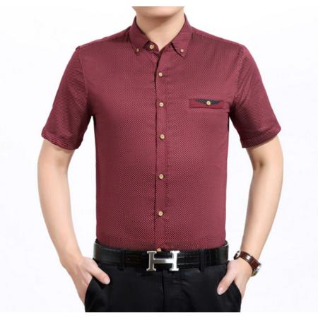 2016夏季新款男式衬衫 休闲男士纯棉翻领衬衫 时尚条纹短袖男装