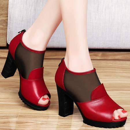 百年纪念春夏鱼嘴鞋单鞋网纱透气粗跟高跟鞋韩版厚底防水台包跟女鞋