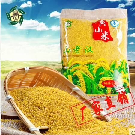 山西新小米 山老汉天然黄小米 农家米杂粮粥米 1.4kg家庭装
