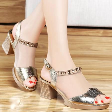 百年纪念女鞋夏季新款网纱透气凉鞋女中跟鱼嘴高跟鞋水钻性感单鞋