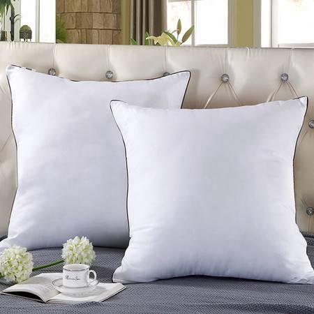 逸轩家纺高弹耐压靠垫芯 抱枕芯 沙发靠垫芯一个 白色60*60cm