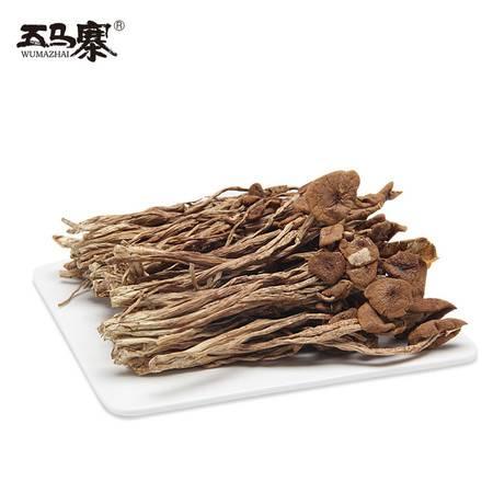 五马寨茶树菇 150g/包
