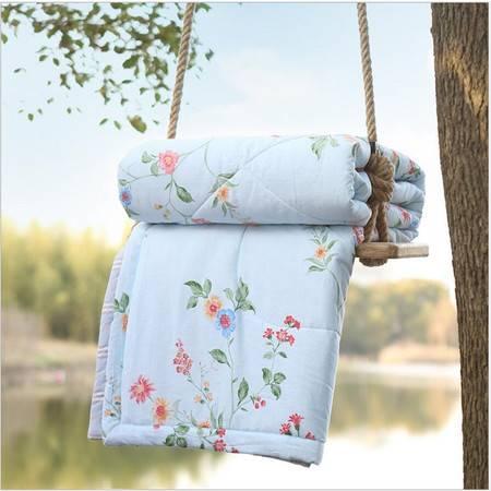 包邮 全棉印花夏被 可水洗纯棉空调被夏天薄被凉被芯被子