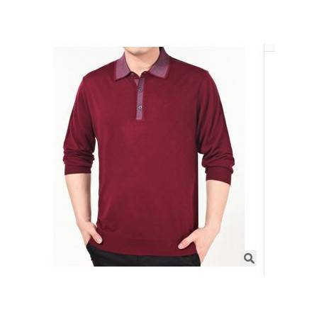 纯色羊毛羊绒针织T恤衫男士长袖T恤 翻领中年商务男装祥盛
