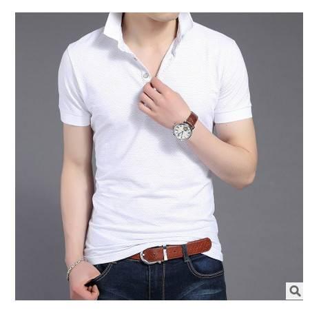 青年修身潮新款半袖男韩版男士短袖T恤 修身半袖男纯棉翻领polo衫墨郎