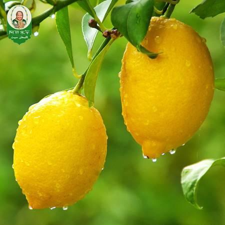 阿丽米罕柠檬 一级尤力克黄柠檬约2斤免运费