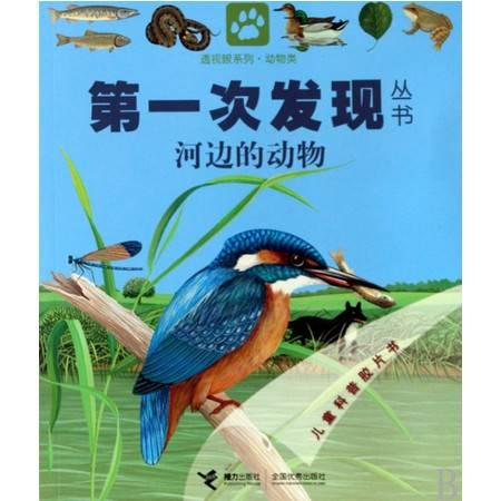 河边的动物/透视眼系列/第 一次发现丛书