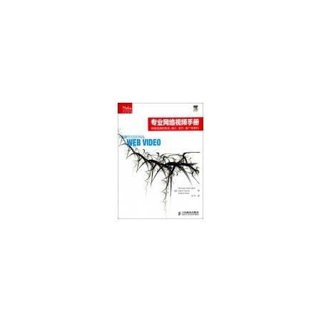 专业网络视频手册(网络视频的策划制片发行推广和营利)