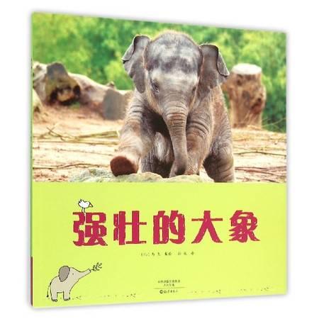 强壮的大象