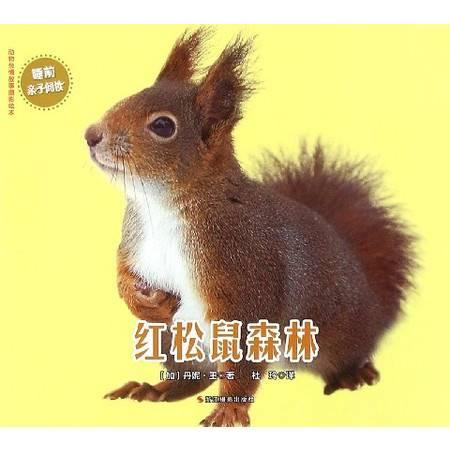红松鼠森林/动物亲情故事摄影绘本