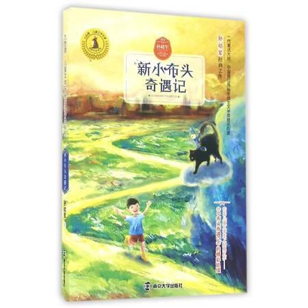 新小布头奇遇记/九色鹿儿童文学名家获奖作品系列