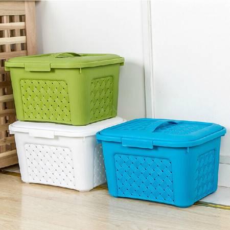 普润 有盖手提可叠加藤编塑料收纳箱 杂物储物箱 百纳箱 绿色
