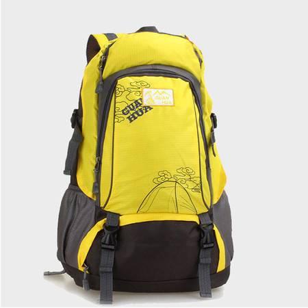 探路先锋 户外登山包40L防水旅行双肩背包徒步运动包 旅行背包 GJ-8612