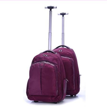 爱芙莱妮 静音轮双背拉杆包 大容量 品牌拉杆箱 20寸 628