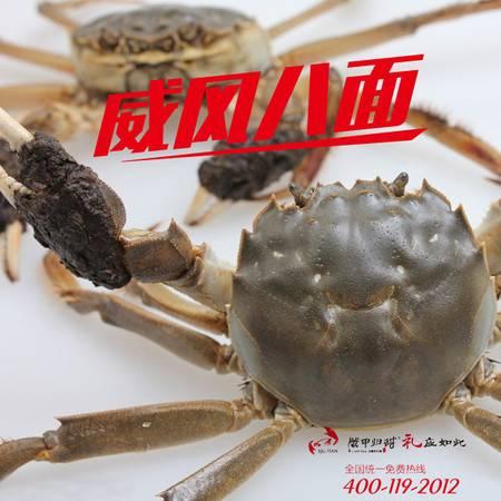 现货大闸蟹10装1288款 天然湖水 源生态养殖螃蟹 好螃蟹是有点甜的