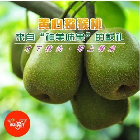 双十一特卖包邮 名山金果黄心猕猴桃(5斤装)