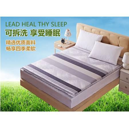 新款可拆洗学生职工宿舍单人双人床垫榻榻米磨毛加厚软床垫1.2M