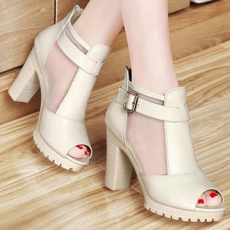 Mssefn2105 欧美范 专柜正品 网纱鱼嘴粗高跟女鞋子DS12-1024