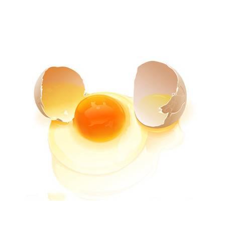 林间散养笨鸡蛋土鸡蛋草鸡蛋40枚