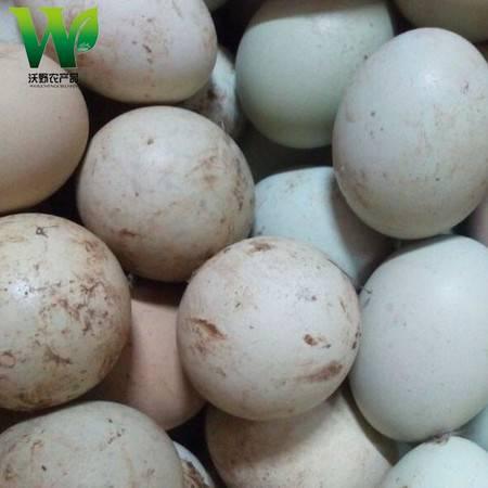 【吉林土特产】江佬散养.绿壳乌鸡蛋45枚礼盒