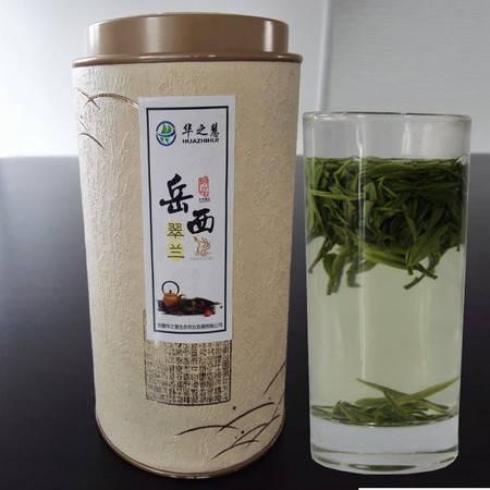 华之慧2016年新茶 明后岳西翠兰绿茶 高山茶叶100克罐装