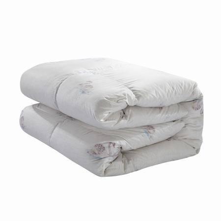 Cozzy蔻姿家纺 90%白鸭绒轻盈保暖冬被 柔朵 1.8米6957533252717