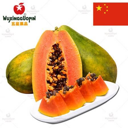 【五星果品】海南水果产地  青红木瓜   优选3个