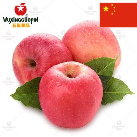 【五星果品】山东水果产地 水晶富士(80果) 超值5斤