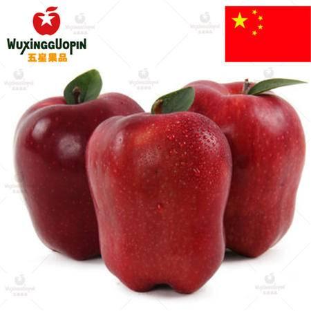 WUXINGGUOPIN【五星果品】甘肃产地 天水花牛苹果5斤装