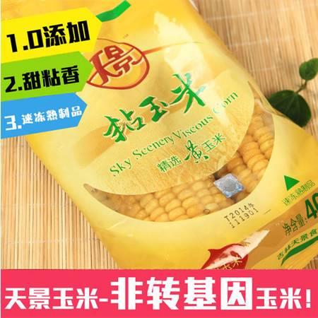 【天景】速冻黄糯玉米东北粘苞米棒甜糯玉米鲜玉米棒 20支/箱