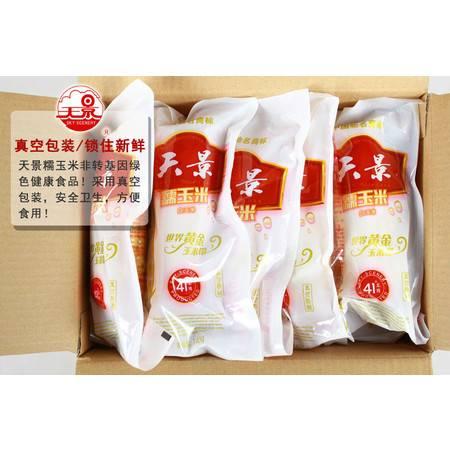 【天景】真空 白 糯玉米  东北粘苞米 10支/箱 包邮