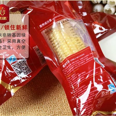 【先诺】真空中端 白 糯玉米 包邮 有机玉米 10支/箱
