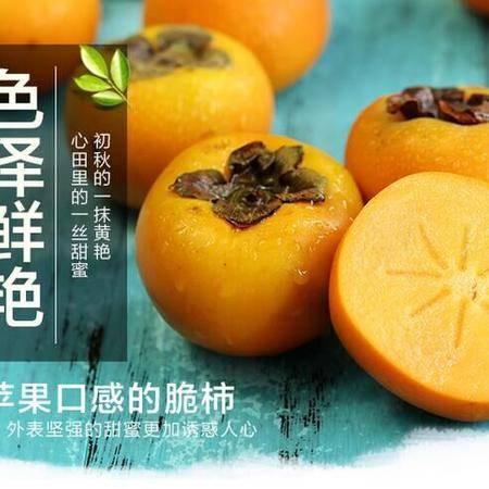 切着吃的柿子!云南保山云益甜柿!