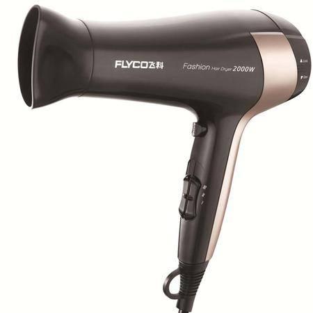 飞科(FLYCO)FH6231大功率电吹风机