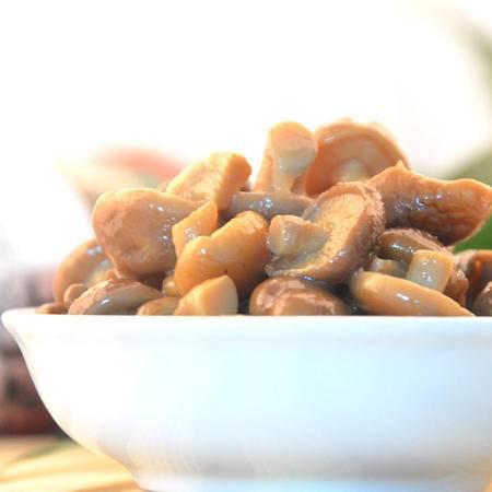 七井七宝土鸡炖香菇有机香菇精选香菇绿色健康食品280g